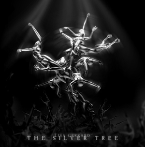 Silvertreecover